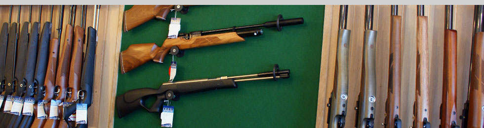 New Airgun Section