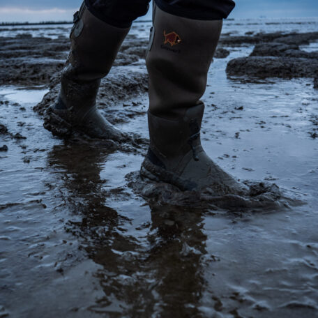Woodwalker on Estuary